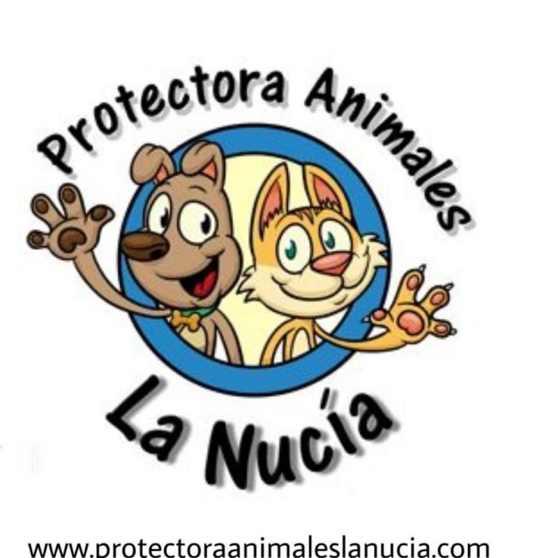 Protectora de Animales de La Nucia