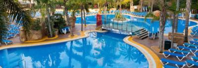 Save up to 10% Off Flamingo Oasis